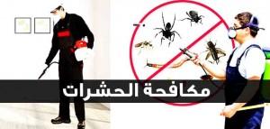 شركة مكافحة الحشرات حدائق الاهرام